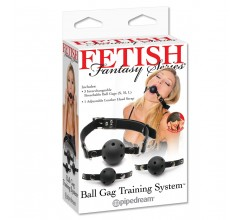 Кляп со сменными шарами «Ball Gag Training System»